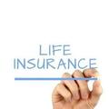 Free life insurance quote from Freedom To Insure