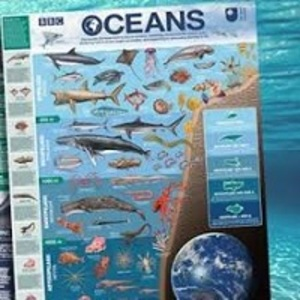 FREE BBC Blue Planet poster